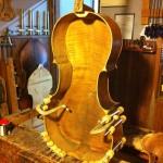 Cello lining
