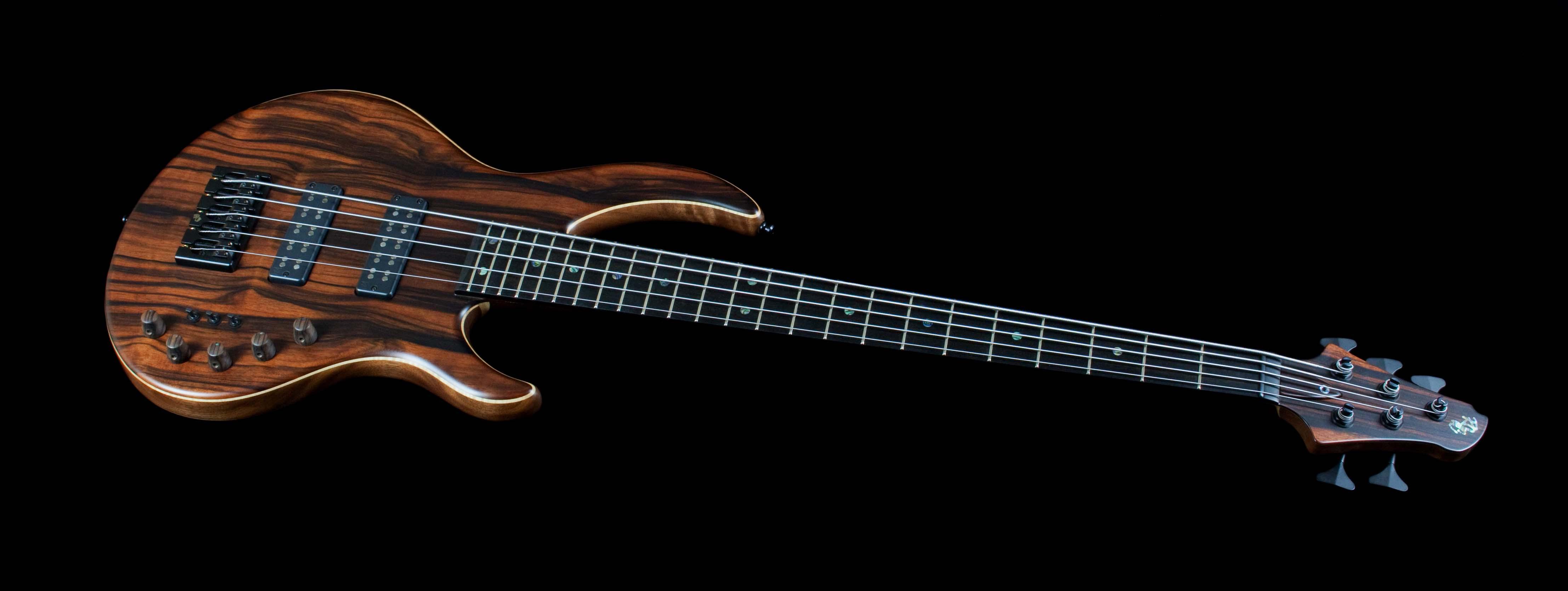 RJ's custom basses | The Bass Shop Syd