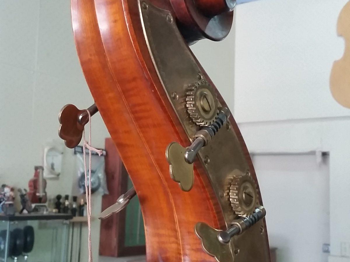 Gliga II 5 string